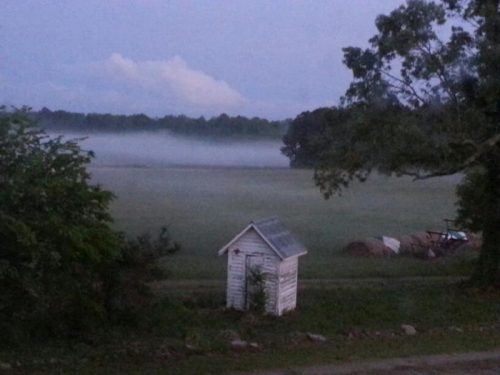 Fog rolls in an hovers over the fields.