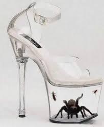 spiderew